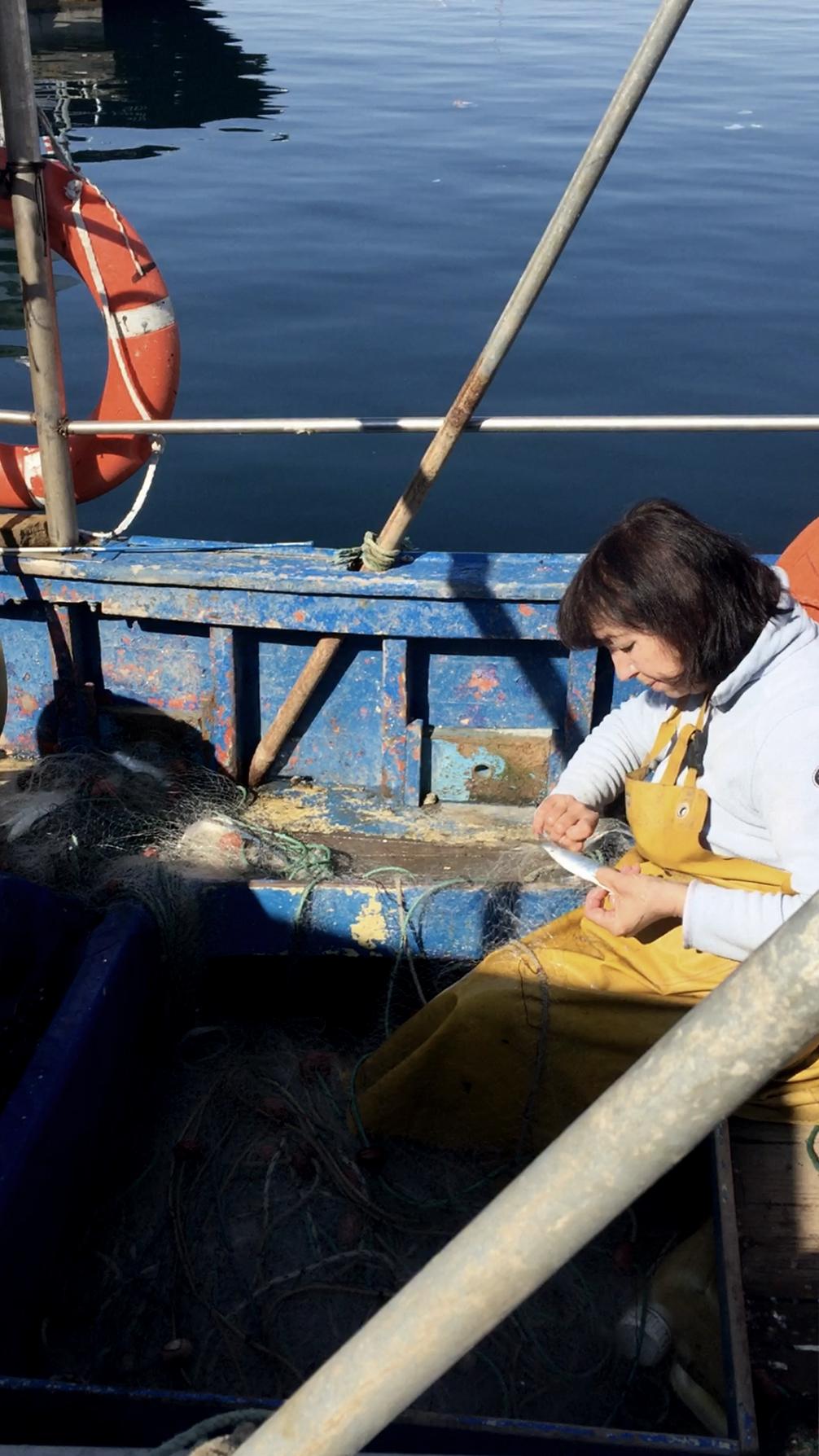 Visite aux pêcheuses et pêcheurs marseillais.es