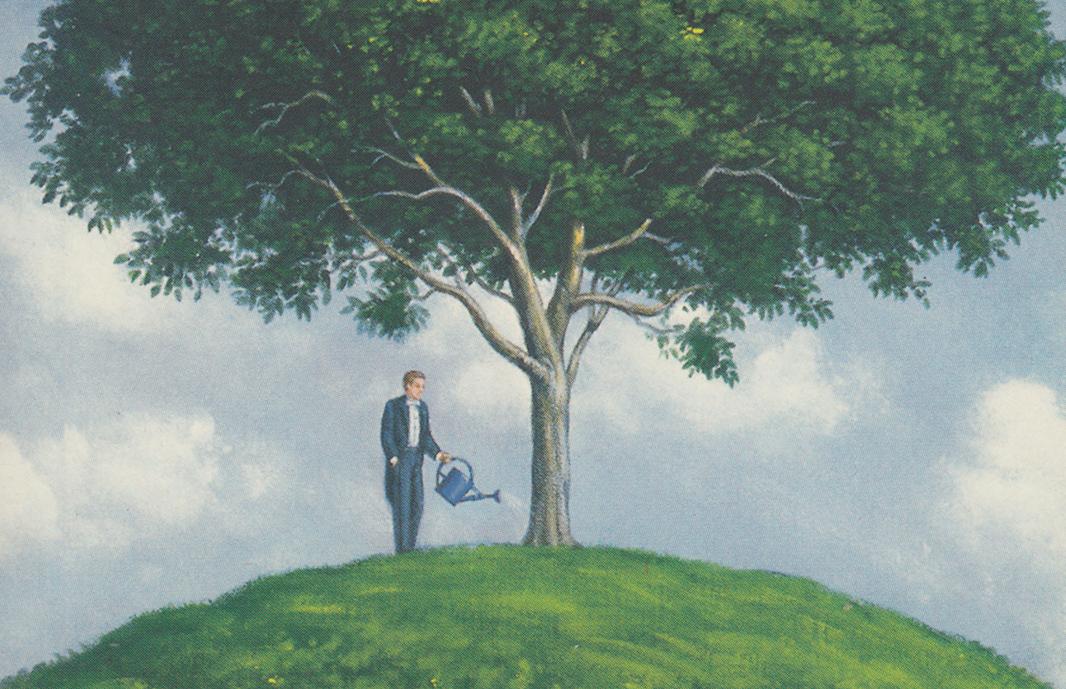 Le maire qui aimait les arbres