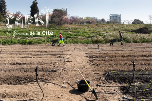 FermeCapri-Marseille-7135-min2